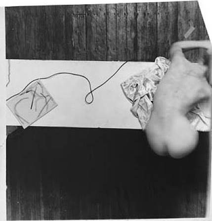 Swan Song, 1978,  Francesca Woodman